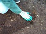 Подготовка почвы к посадке растений